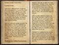 Journal of a Fallen Officer 1 of 2.png