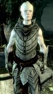 KnightPaladinGelebor