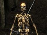 Szkielet (Skyrim)