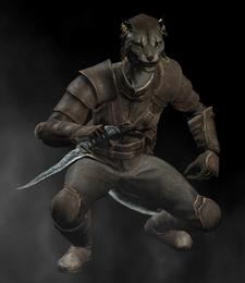 Каджит (Skyrim)