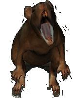 Крыса (Oblivion)2