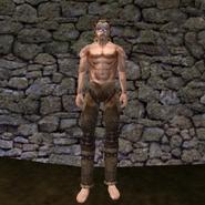 Простые штаны (Morrowind) 2 (муж)