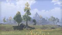 Сиродил (Online) — Замок Чёрного Сапога