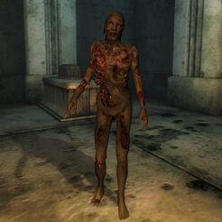 Зомби в айлейдских руинах