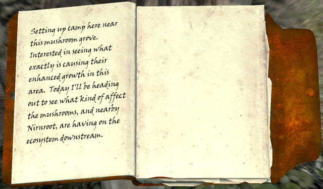 File:Alchemist's Journal2.png