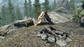 Bear Hunter's Camp.png