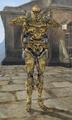 Bonemold Armor - Morrowind.png