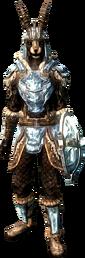 Сталгримовая лёгкая броня (ж)