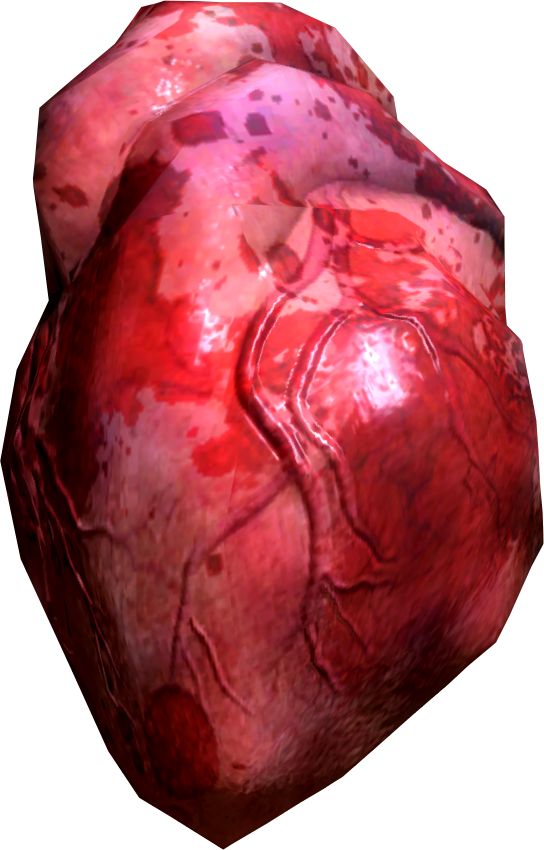 Image - Human heart.png | Elder Scrolls | FANDOM powered by Wikia