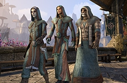 File:Mages Guild Pack.png