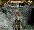 Tanyin Aldwyr