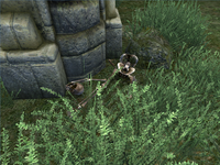 Башня Аркведа - странный скелет
