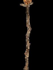 Роза Сангвина (Oblivion)