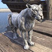 Сенч-тигр лунного света