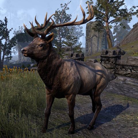 File:ESO Elk.png
