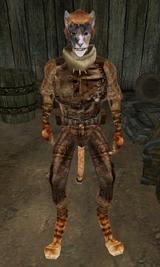 Ra'Zhid's Dwemer Artifacts