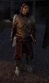Siege Commander Dulph.png