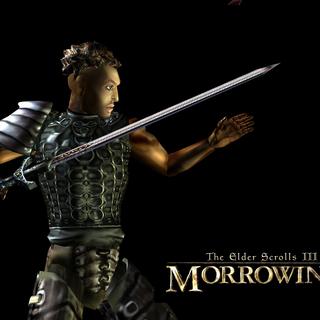 Redgard w The Elder Scrolls III: Morrowind