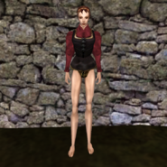 Простая рубашка (Morrowind) 23 (жен)