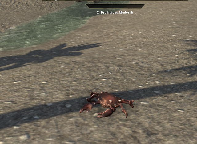 File:Prodigious Mudcrab.png