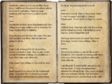 Blue Road Scout Notes