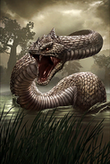 Giant Snake card art