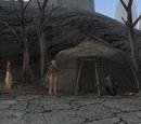 Shashurari Camp