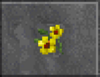 Yellow Flowers (Daggerfall)