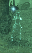Dark Witness Witchman Spirit
