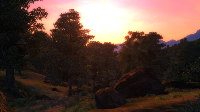 File:TESIV Location Great Forest 5.png