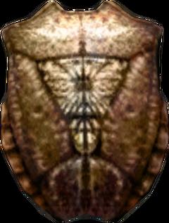 Хитиновый щит (morrowind)