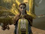 Варона Нелас (Dragonborn)