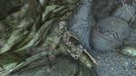 Лабиринтиан Трибуны Скелет с ребенком Драгоценности