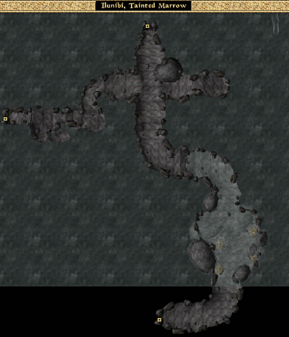 File:Ilunibi, Tainted Marrow - Local Map - Morrowind.png