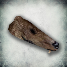 Шкура медведя (Bloodmoon)