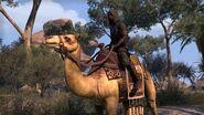 The Elder Scrolls Online Introduzione a Thieves Guild.