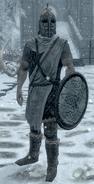 Winterhold Guard