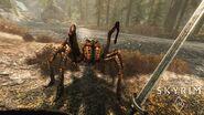 SkyrimVR Spider watermark 1497052194