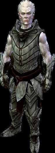 Рыцарь-паладин Гелебор (в полный рост)