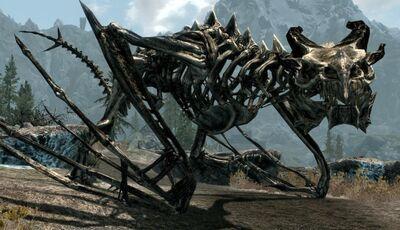 Drago scheletricok