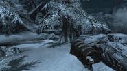 TESV Predator's Grace Location