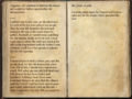 Agganor's Journal 2.png