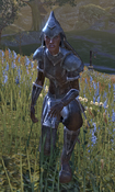 Female Alik'r Champion