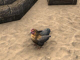 Курица (Online)