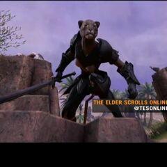 Khajiit z gry The Elder Scrolls: Online