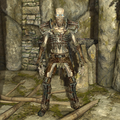 Draugr Scourge.png