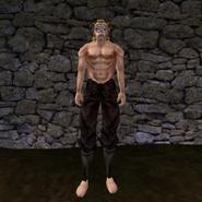 Простые штаны (Morrowind) 15 (муж)