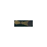 Свиток (Battlespire)