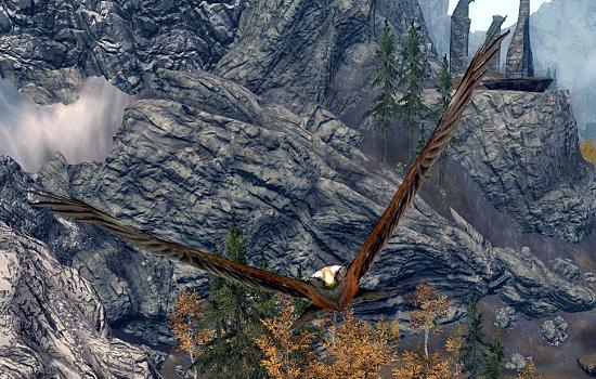 Hawk Elder Scrolls Fandom Powered By Wikia