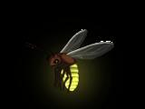 Светлячок (Skyrim)